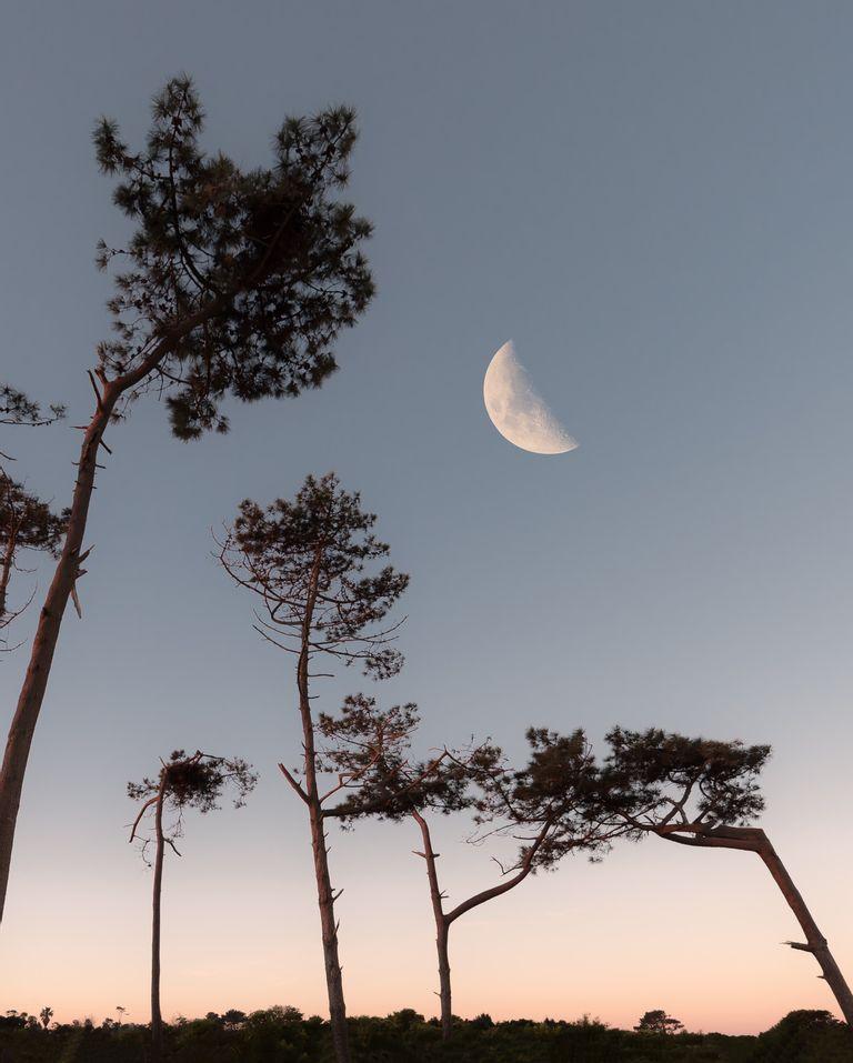 Nouvelle lune du 10 juin et mercure rétrograde