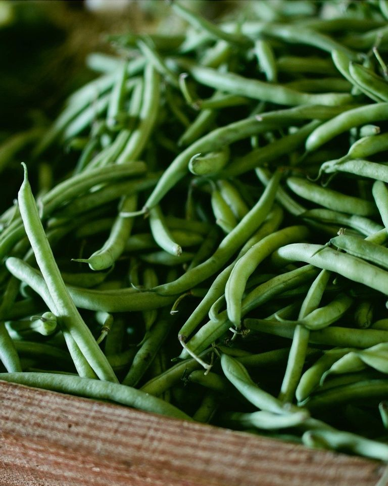 bienfaits des haricots verts