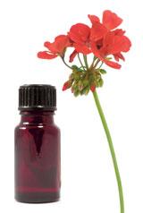 Géranium rosat contre l'acne et les rides