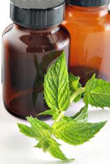 La menthe et la douleur : migraine, règles douloureuses, douleur dentaire