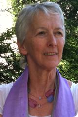Rencontre avec Anny Poursinoff, députée Europe Écologie - Les Verts des Yvelines