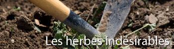 Trucs et Astuces jardinage bio