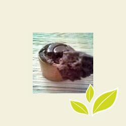 Mousse au champagne chocolaté (sans œufs, ni champagne)