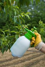 Lettre de soutien au Pr Seralini et à ses travaux sur le Maïs OGM NK 603