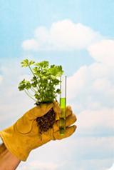Les pesticides et additifs dans nos assiettes