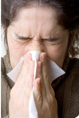 Le rhume des foins revient
